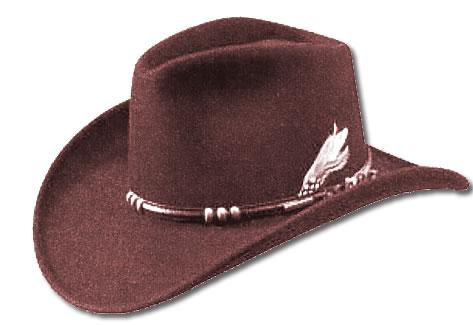 Les frères du Montana - Tome 1 : L'été d'un cow-boy de Linda Lael Miller Cow-boy