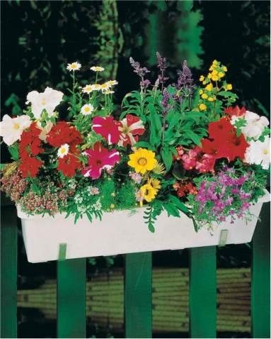 000901-tapis-de-fleurs-pour-jardiniere_1x500